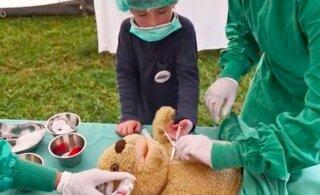 Зачем в Германии лечат плюшевые игрушки