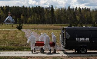 В Петербурге смертность в мае выросла почти на 32%