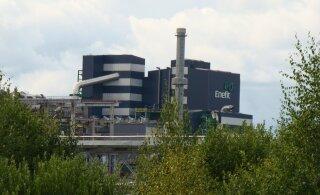 Член руководства Eesti Energia: в следующем году больших сокращений не будет