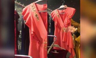 ФОТО И ВИДЕО | Хотите королевское платье к Новому году? Смотрите, какие наряды распродают эстонские красавицы!