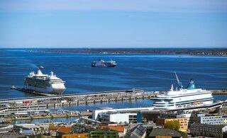 Таллиннская горуправа хочет модернизировать территорию Старого порта