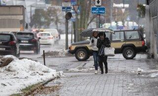 Vabariigi aastapäev tuleb plusskraadide ja kohatise vihmaga