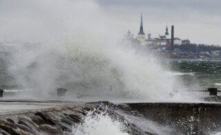 На выходных на Эстонию обрушится шторм: на островах и побережье ветер достигнет 25 м/с
