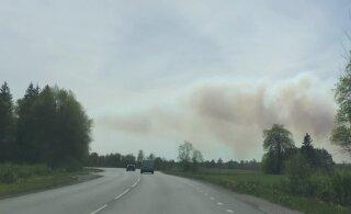 VIDEO JA FOTOD | Kloogal põleb mets või maastik