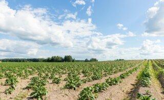 Põllumajandusettevõtted on käibekasvu osas kõige optimistlikumad