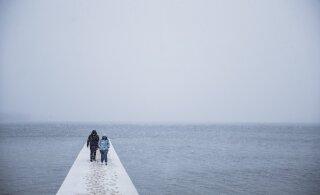 В ближайшие дни в Эстонии — ветродуй, гололед и мерзопакость