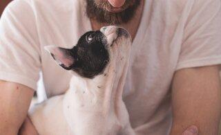 Kas sinu koer armastab sind? Viis asja, mida koer teeb, kui ta sinusse tõeliselt kiindunud on