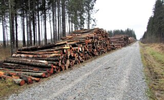 Leili metsalood | Siledad metsateed ja koormuspiiratud külateed