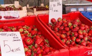 Vahendus kergitab maasikate hinna neljakordseks