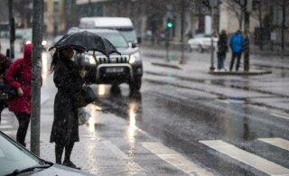 Погода резко поменялась с солнечной на дождливую. Готовы к майскому снегу?