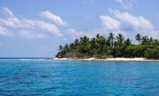 Троих моряков нашли на необитаемом острове в Тихом океане благодаря надписи SOS на песке