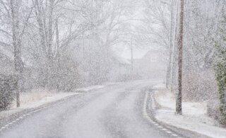 ФОТО | Весна по-эстонски: в Вильянди начался снегопад