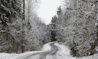 ИЗУМИТЕЛЬНЫЕ ФОТО | В Эстонию пришла настоящая зима!