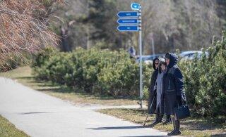 Будет ли Таллинн обрабатывать столичные парки от клещей?