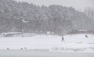 Veebruar tuleb talvine: pehme ja lumine ilm vaheldub pakaseliste perioodidega