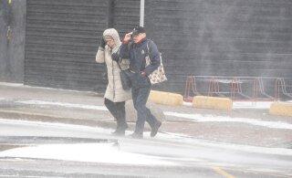 Мокрый снег, дождь, сильный ветер. Повлияет ли отвратительная воскресная погода на на исход выборов?