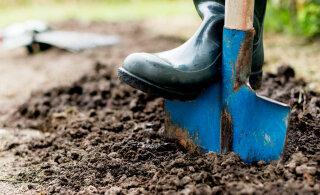 Võimalused aiamulla paremaks muutmiseks