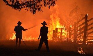 Kodud põlevad, inimesed hukkuvad, aga meie tahame kihutada Miki Hiire katseid... Miks jäeti Austraalia ralli ära nii hilja?