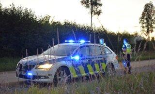 В волости Тарту 14-летний подросток на автомобиле врезался в дерево. Виноват лось?