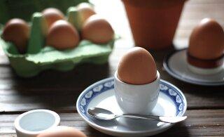 RETSEPT | Lihavõtetest üle jäänud munadest valmista maitsev munasalat karulauguga