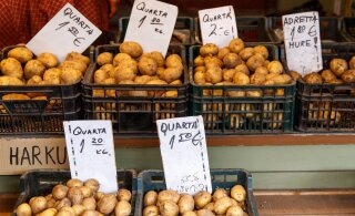 Мы сделали это за вас: читайте, какой сорт картошки для салата, а какой – для пюре!