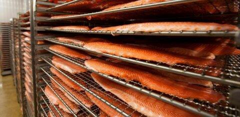 M.V.Wool сокращает срок хранения продуктов холодного копчения и засоленных продуктов