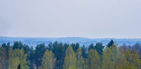 Над Эстонией распространяется запах дыма, происхождение которого не удается установить