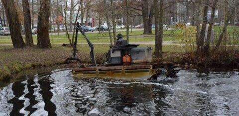ФОТО и ВИДЕО   Пруд парка Левенру под угрозой из-за донных отложений