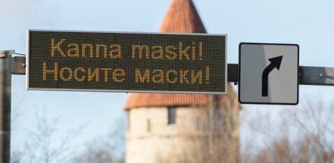 """""""Если даже ель носит маску, то и вы можете"""" — эстонцы обсуждают необычное фото в Сети"""