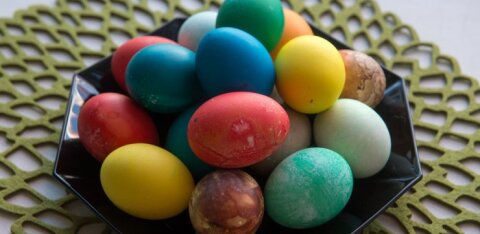 SUUR LIHAVÕTTESPIKKER | kõige vajalikumad nipid munade keetmiseks, 100 erinevat võimalust munade värvimiseks ja parimad munaretseptid