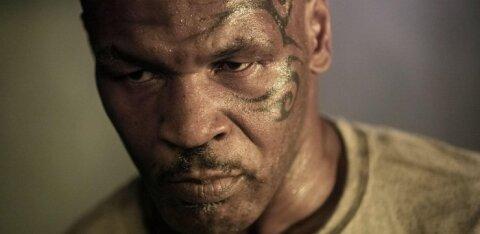 Tyson <em>vs.</em> Jones: vaata, kui palju usub rahvas Mike Tysonisse!