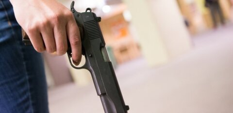В Пыхья-Таллинне нашли похожие на оружие предметы и муляж гранаты с наркотиками