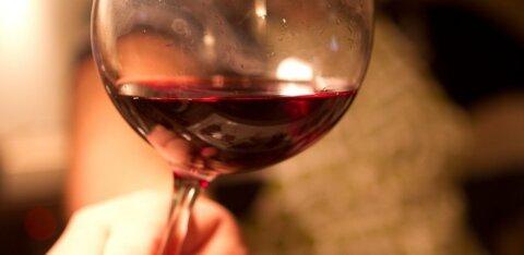 В Европе наблюдается взрыв спроса на качественное грузинское вино