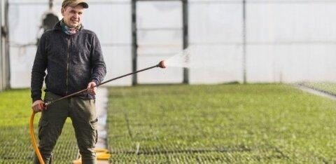 Сельскому хозяйству нужны работники. Но украинцев государство не дает, а эстонцы не идут сами