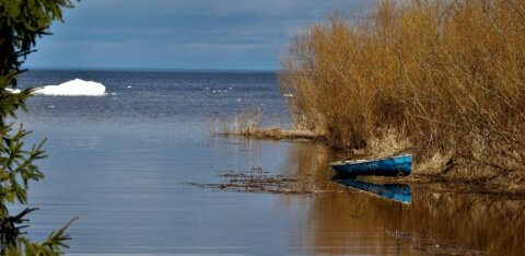Peipsi järve veetase langes alla pikaajalist keskmist