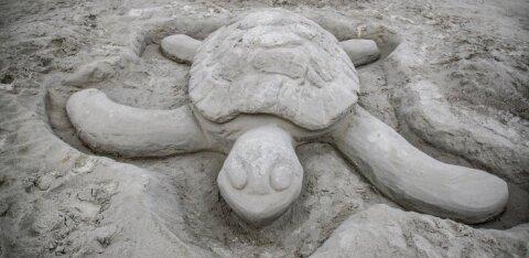 ФОТО | На пляже Хаабнеэме появились песчаные сульптуры