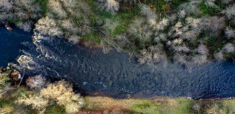В Таллинне проведут исследование городских рек