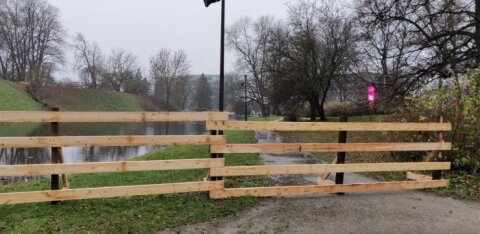 Доступ к пруду Шнелли ограничен: начались работы по очистке пруда