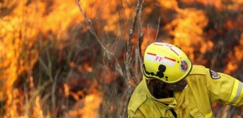Тянак без рекорда. Из-за лесных пожаров отменено Ралли Австралии