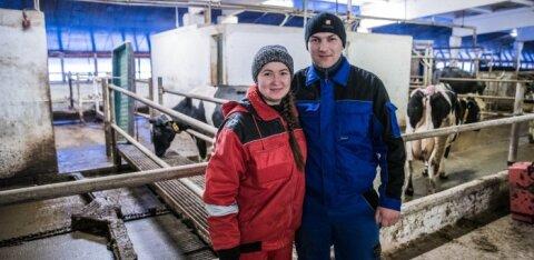 Украинские рабочие в Эстонии: для кого они угроза, а для кого — благодать?