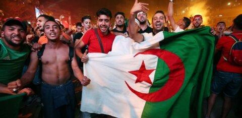 ВИДЕО: Безумные празднества Алжира