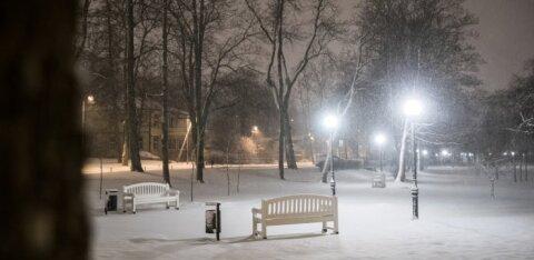 Põhjanaabrite lumetormi mõjutused jõuavad ka Eestisse: reedel on oodata tugevat tuult, tuisku ja veidi ka krõbedat külma