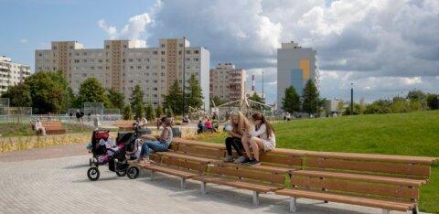 """В Ласнамяэ пройдет конкурс """"зеленых"""" балконов"""