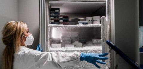 Какую вакцину от ковида зарегистрируют в ЕС первой, и как ее распределят