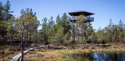 Путешествия при закрытых границах: бесплатные виртуальные туры помогут открыть туристические места в Эстонии, Латвии и России