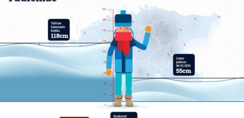 INTERAKTIIVNE SKEEM   Vaata, kui palju lund Eesti eri paigus maha on tulnud ja kui kõrged on praeguseks hanged
