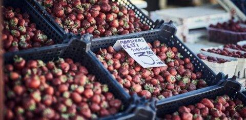 Turult ostetud maasikakarbis on peal ilusad, all nigelad marjad