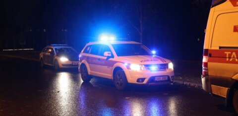 На шоссе Таллинн-Пярну-Икла грузовик насмерть сбил женщину. Она спешила на автобус
