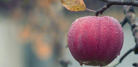 Осеннее равноденствие в сентябре 2019 года: приметы и ритуалы