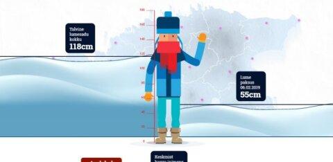 ИНТЕРАКТИВНЫЙ ГРАФИК: Сколько выпало снега в разных уголках Эстонии и где самые высокие сугробы